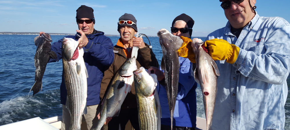 Group of Guys Holding Some Great Fish They Caught